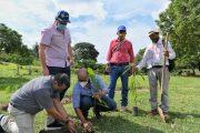 Con sistemas agroforestales, conservarán áreas de la quebrada Buturama (Aguachica)