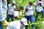 Comfacesar lidera campaña de reforestación en municipios del norte del Cesar