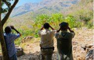 Cinco cóndores fueron observados en el Parque Los Besotes