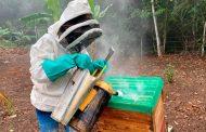 Cerrejón dona a Hatonuevo un apiario para la producción de venta de miel artesanal