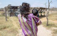 Piden que Gobierno rinda cuentas en la Corte por hambre y desnutrición en La Guajira