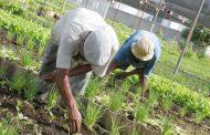 Pequeños y medianos productores agropecuarios podrán hacer acuerdos de pago