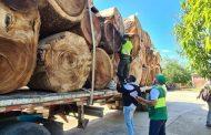 La Policía incautó madera de contrabando en La Paz (Cesar)