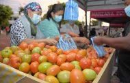Más de $ 44 millones en productos de la canasta familiar se vendieron en el Mercado Campesino en Valledupar