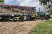 Tres personas detenidas cuando transportaban 1.034 palos de madera de diferentes especies