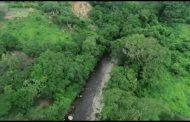Implementan proyecto de rehabilitación de ecosistemas forestales en Dibulla (La Guajira)