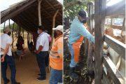 ICA realiza seguimiento a vacunación contra fiebre aftosa en La Guajira